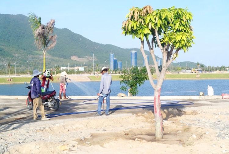 Hình ảnh thực tế Golden Bay Cam Ranh