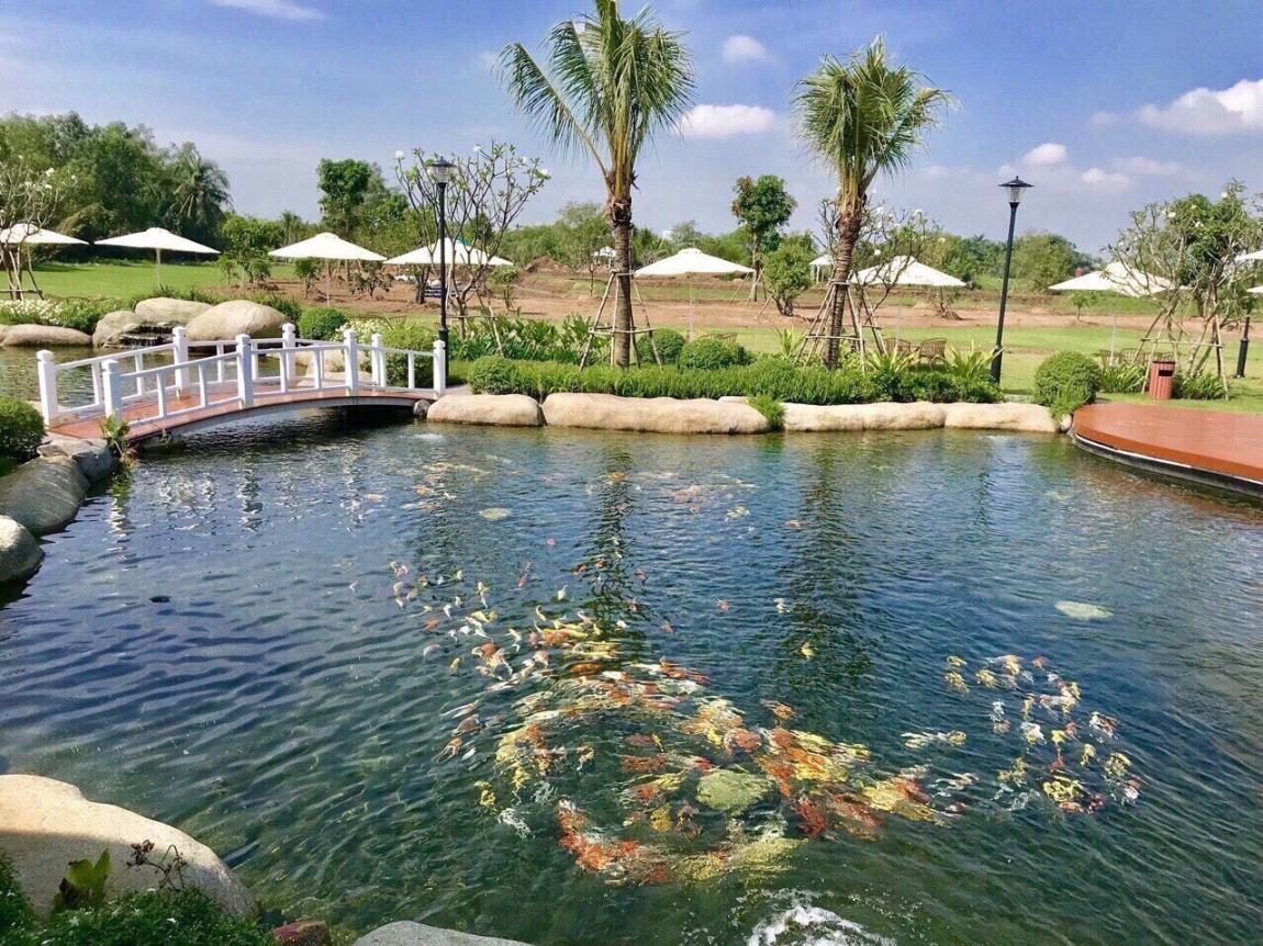Hình tiến độ thi công dự án Saigon Riverside Village